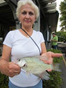 Barbara Large